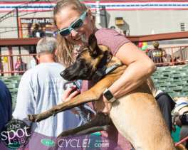 paws in the park-9911