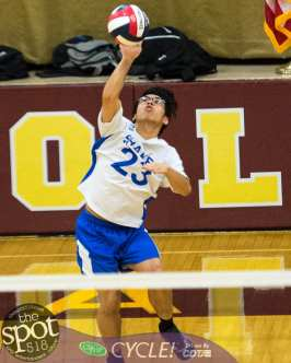Col-shaker volleyball-6515