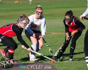 field hockey-9214
