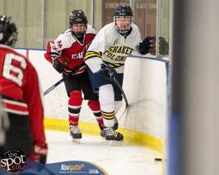 S-C AA hockey-8838