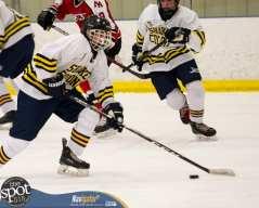 S-C AA hockey-9414