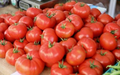 Troy Farmers' Market officials looking for indoor market place, outdoor market will continue