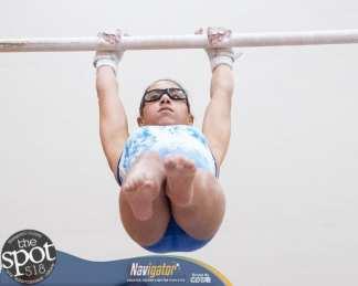 gymnastics-1021
