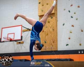 gymnastics-4273
