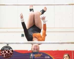 gymnastics-1677
