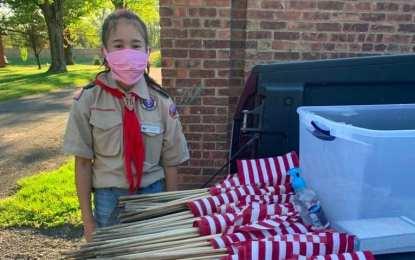 Delmar BSA Troop 75 honors fallen veterans with flags (w/photos)