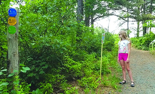 FAMILY NOW: Stretch your legs on a StoryWalk