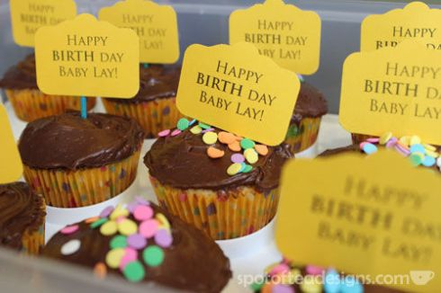 Birth Day Cupcakes to bring to the hospital | spotofteadesigns.com