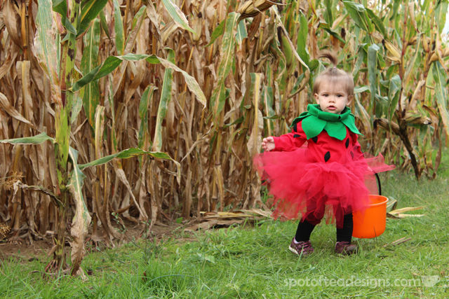 #DIY Strawberry #Halloween Costume for a Toddler | spotofteadesigns.com