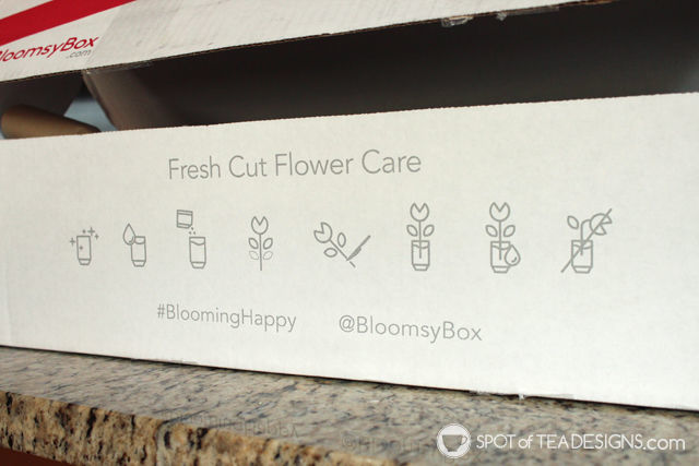 Frush Cut Flower Care instructions illustrated on @BloomsyBox shipments #BloomingHappy #ad | spotofteadesigns.com