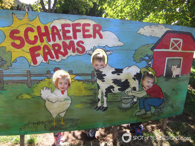 12+ great places for toddlers in the greatest central new jersey area. Schaeffer Farms #toddlerlife #newjersey | spotofteadesigns.com