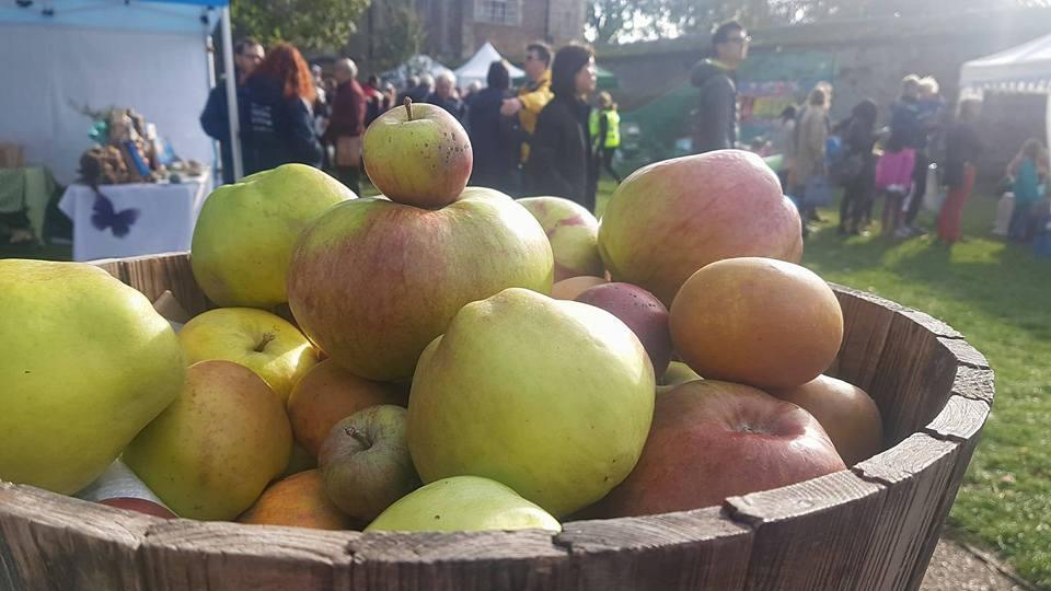Core – It's Ely Apple Festival Time Again