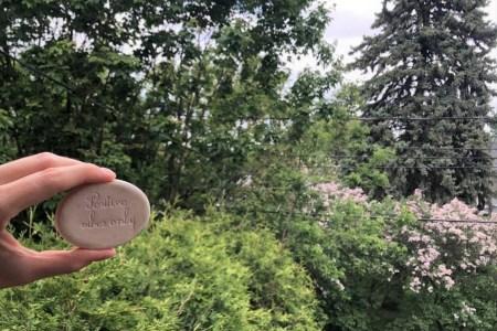 """Pierre de diffusion d'aromathérapie sur laquelle est inscrit """"Positive vibes only"""" avec un arrière-plan d'arbres et de fleurs en été."""