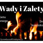 Wady i Zalety Brykietu Drzewnego i Drewna Kominkowego.