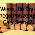 Czy Wiesz Ile Brykietu Drzewnego Potrzebujesz Na Zimę?