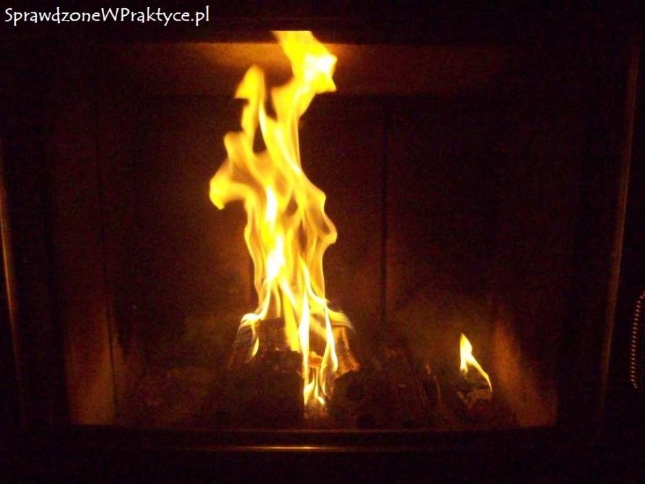 Płonący brykiet Pini-Kay
