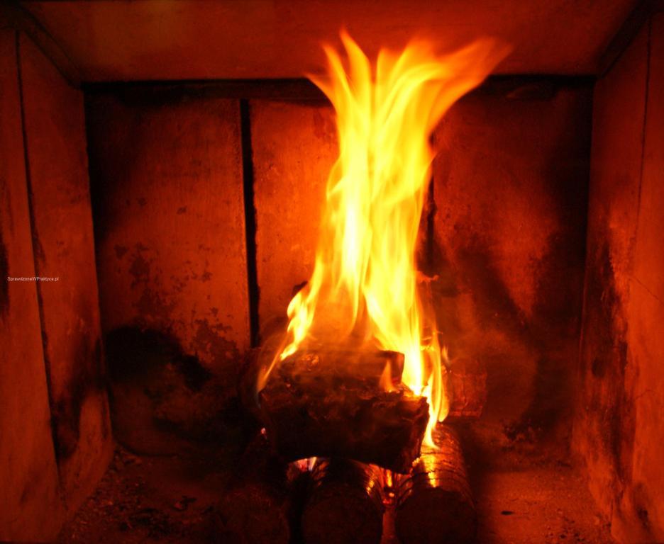 Brykiet Dąbex płonący w kominku