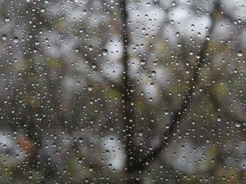 Grau und regnerisch - der November 5