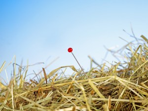 Die Nadel im Heuhaufen suchen - © 0pidanus/fotolia.de