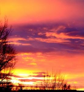 Morgenstund hat Gold im Mund - © Hedwig Storch, Wikipedia