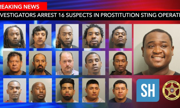 16 Arrested In Widespread Undercover Prostitution Sting