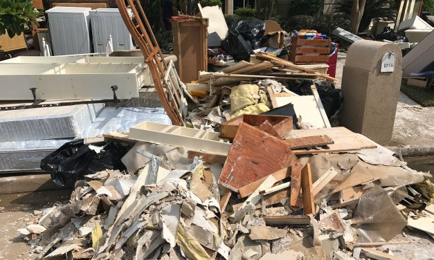 Storm Debris Pickup Ends Today in Montgomery County