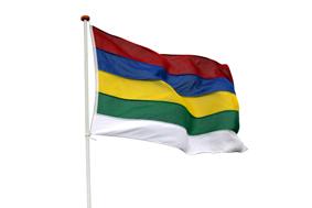 Terschellinger vlag