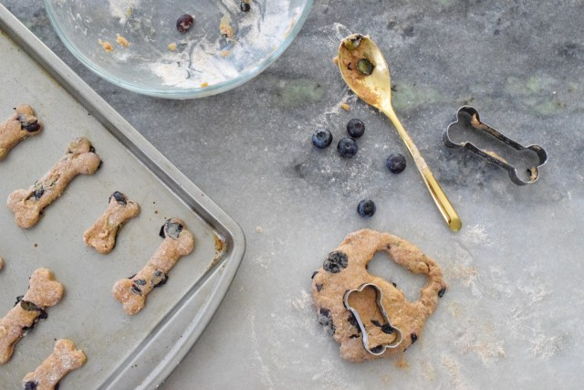 Easy Blueberry Dog Treats