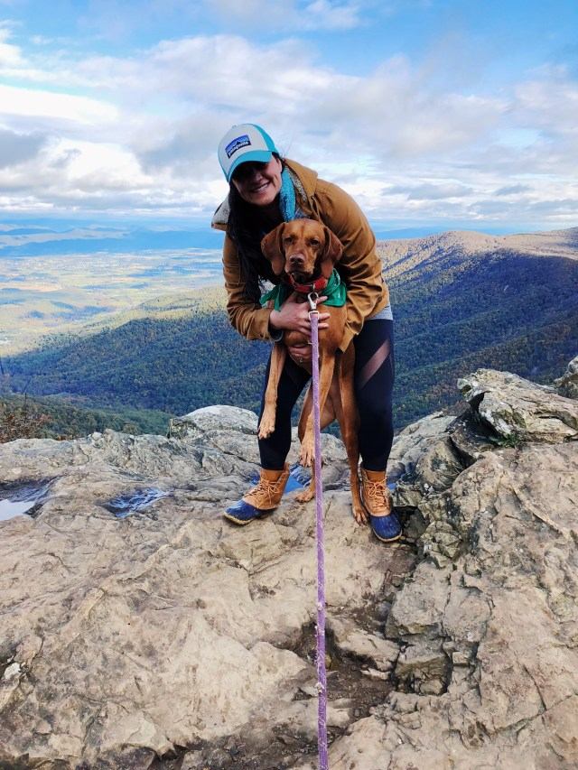 Hiking with a dog in Shenandoah National Park
