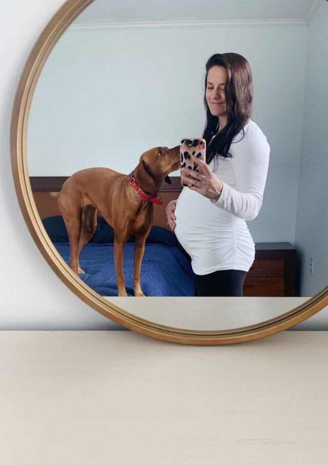 24 week baby bump