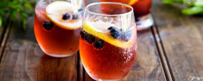 Lemon and Blueberry Punch