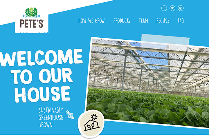web design agency food and travel industries - california