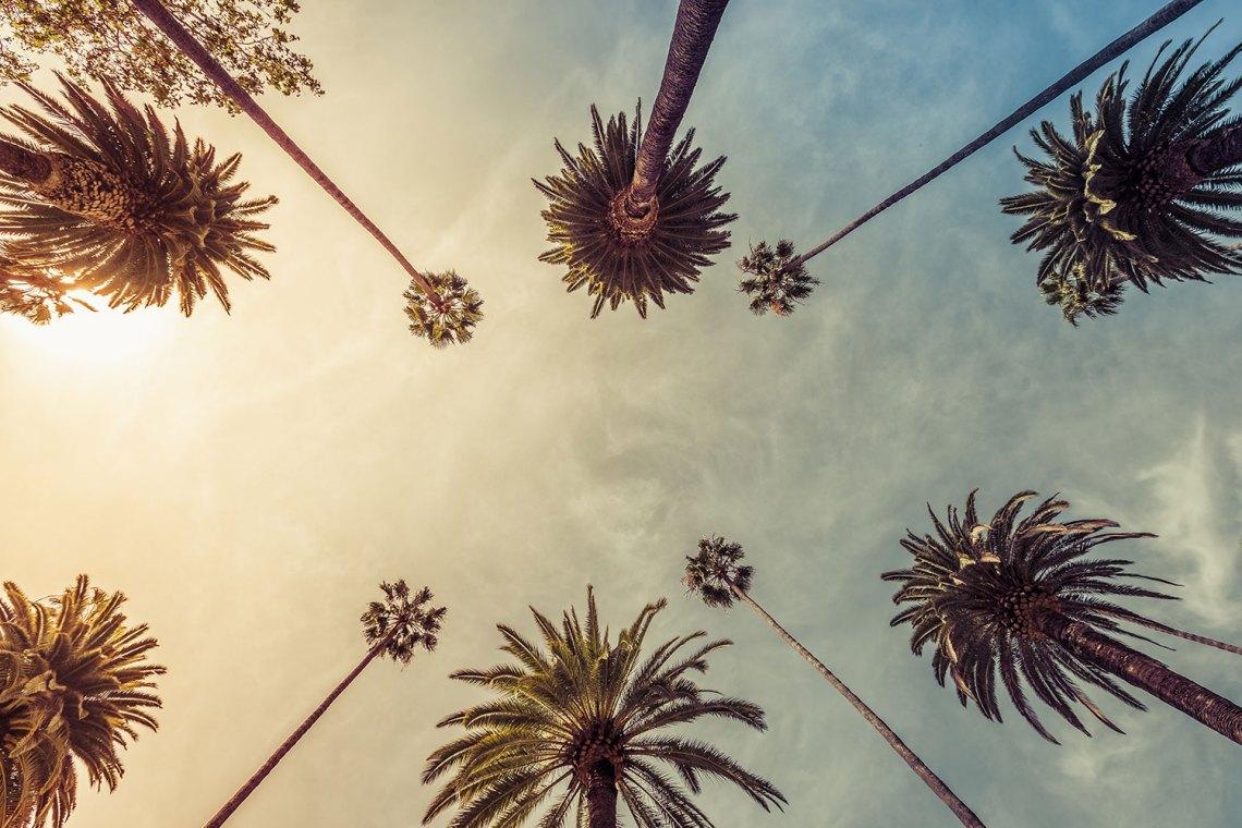 Los Angeles CA web design and web development company