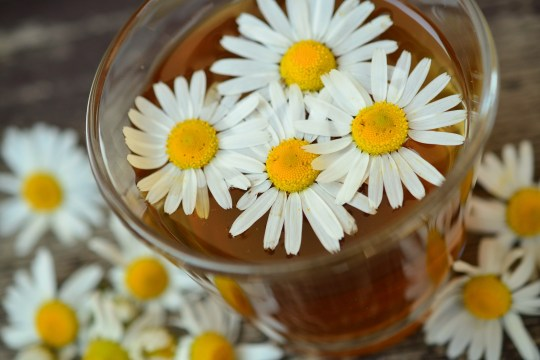 Chamomile Ginger Iced Tea