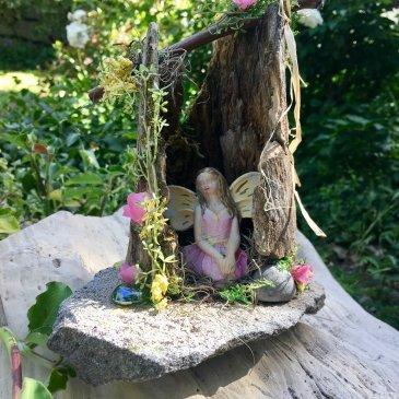 Why Fairy Garden?