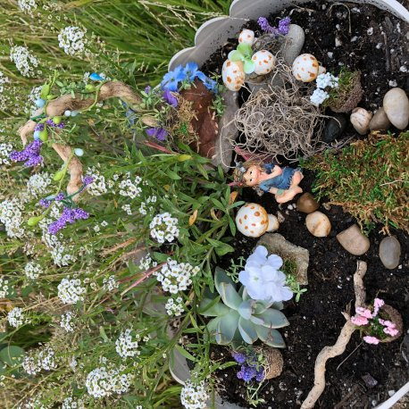 Blue Fairy Garden Kit by Sprouted Dreams (8)
