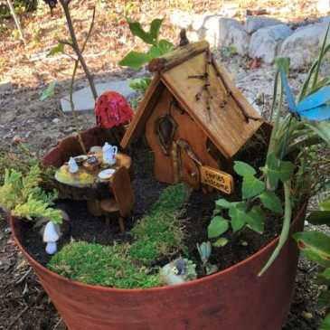 Create a Fairy garden in a pot