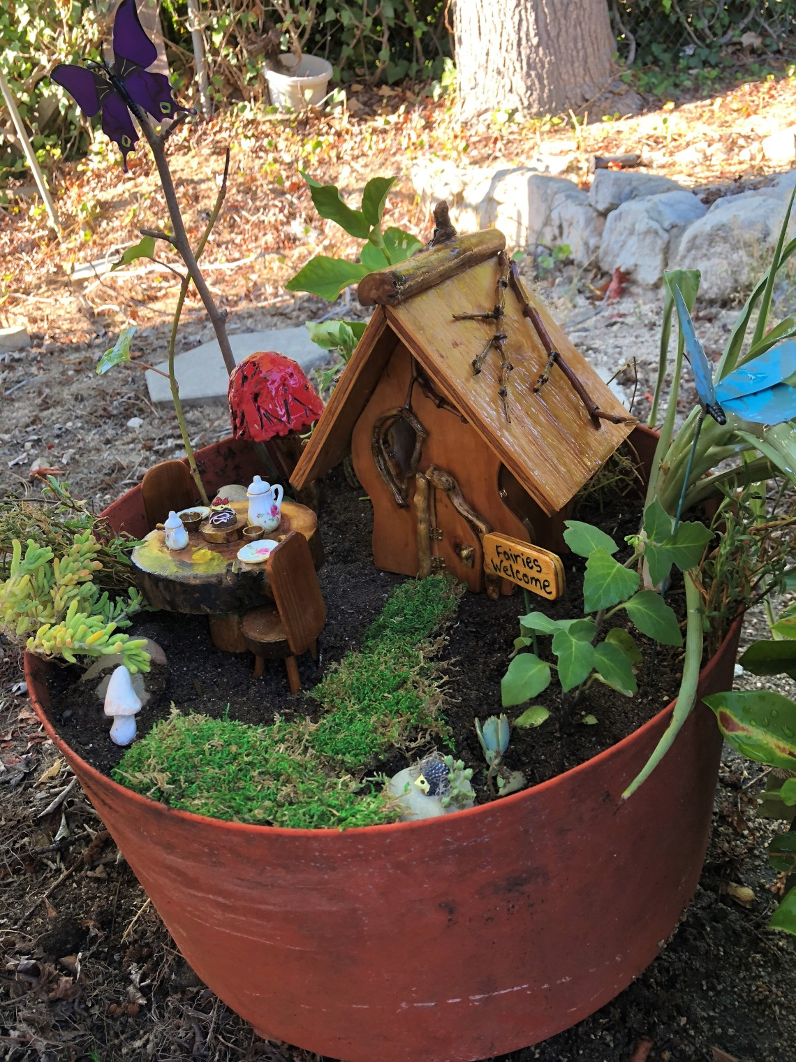 Outdoor Fairy Garden in a Pot (3)