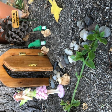 Fairy Garden Kit for Outside by Sprouted Dreams (3)