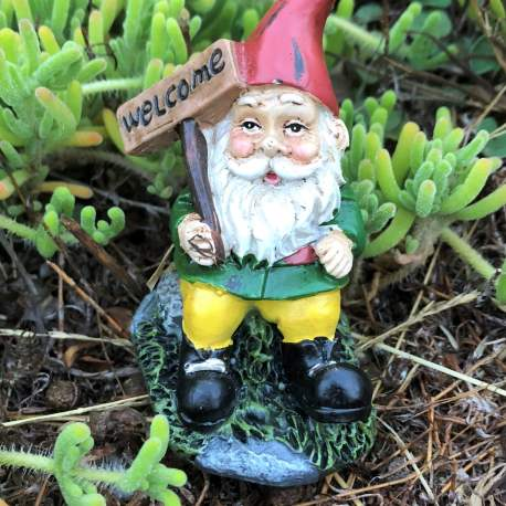 Welcome Gnome from Sprouted Dreams (3)