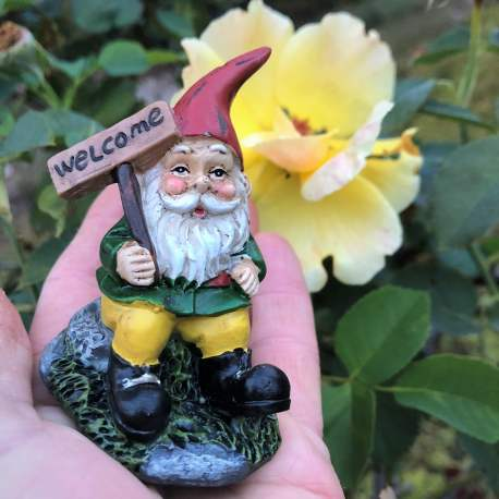 Welcome Gnome from Sprouted Dreams (5)