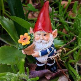 Garden Gnome with Flowerpot
