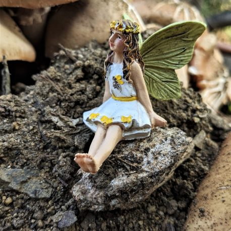 Honey Fairy3