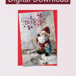 Believe Christmas Gnome Card
