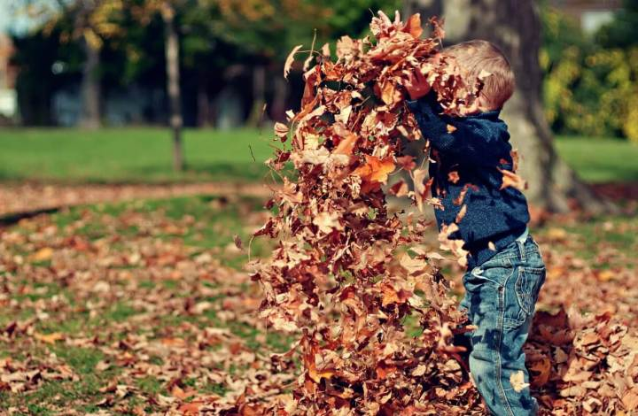 5 Fantastic Fall Songs Your Kids Will Love