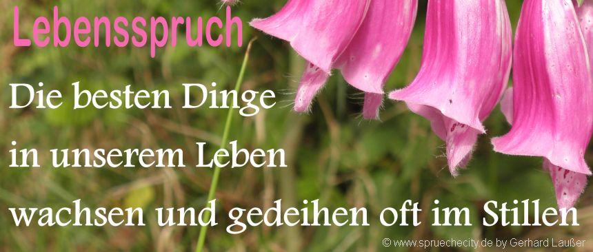 Image Result For Bekannte Zitate Zu Liebe