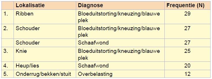 Tabel 2 Meest voorkomende combinaties van lokalisatie en diagnoses