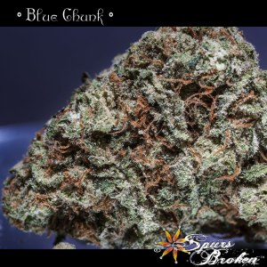 Blue Chunk - Cannabis Macro Photography by Spurs Broken (Robert R. Sanders)