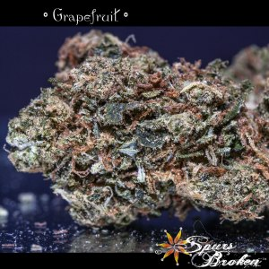 Grapefruit -Cannabis Macro Photography by Spurs Broken (Robert R. Sanders)