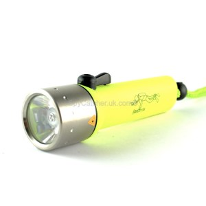 Neon Divers Torch A